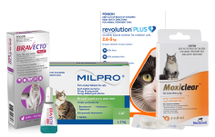 Shop Wormer Products for Cats