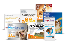 Shop Flea & Tick Products