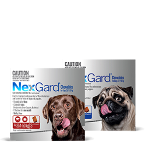 Nexgard for Dogs