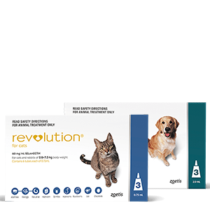 Revolution for dogs & cats