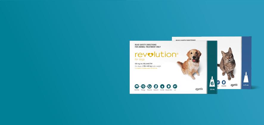25% Off Revolution 12 packs