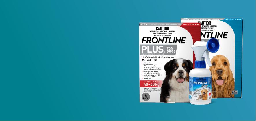 25% Off Frontline Plus 6 & 12 packs/sprays