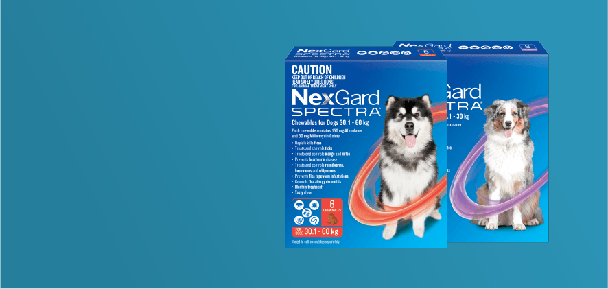 Free shipping NexGard Spectra 6 & 12 packs