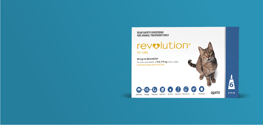 20% Off Revolution Cat 6 packs
