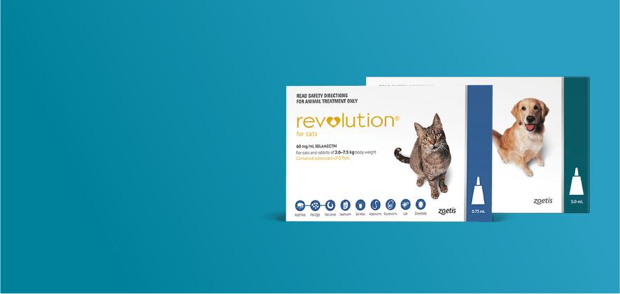 15% Off Revolution 6 packs