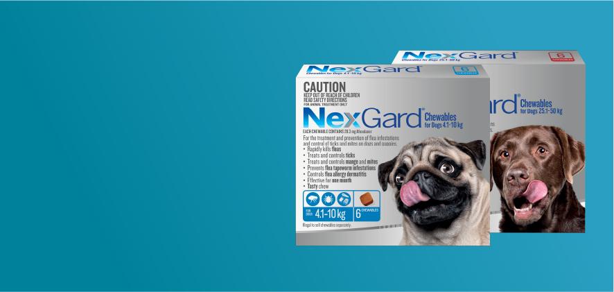 15% Off Nexgard 6 & 12 packs