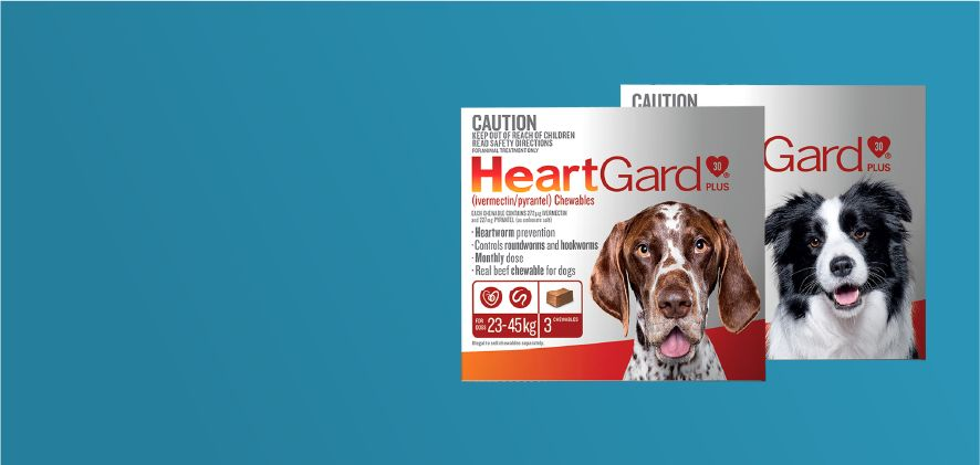 15% Off HeartGard Plus 6 & 12 packs