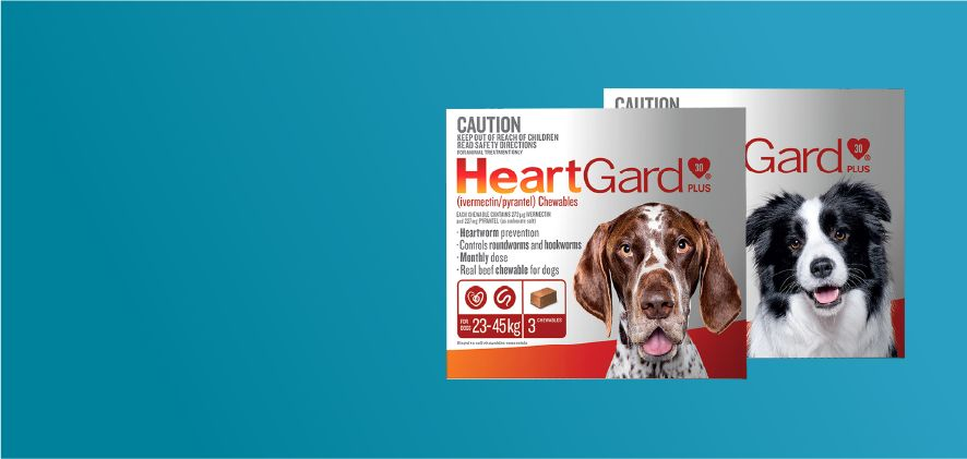 15% Off HeartGard Plus 6 & 12 packs