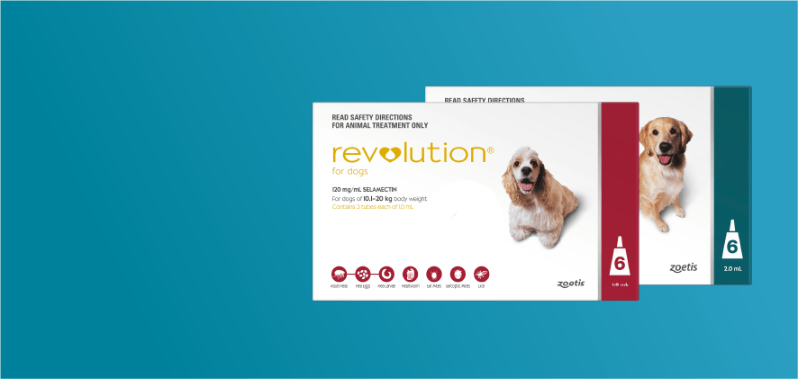 $15 Off Revolution Dog 6 packs