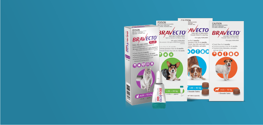 10% Off Bravecto entire range