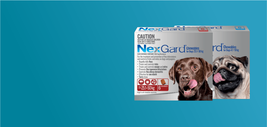 15% Off NexGard 6 & 12 Packs