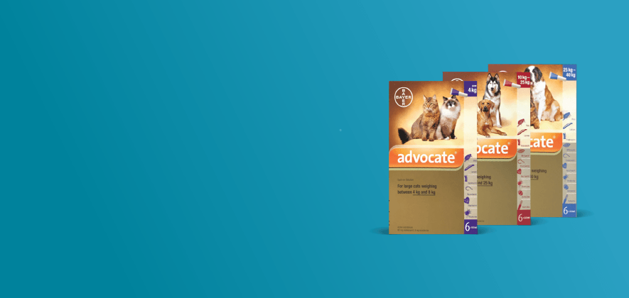 $30 Off Advocate 6 & 12 Packs