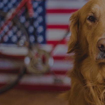 15% Off Frontline Plus Pet Health Care