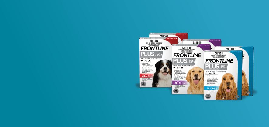 25% Off Frontline Plus